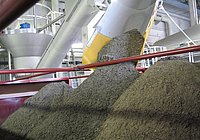 COANDA Grit Washing Plant RoSF 4: Superior function and grit yield